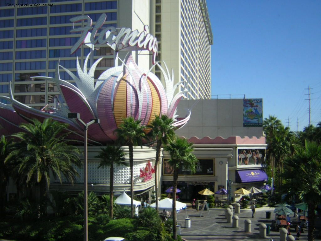 las vegas flamingo hotel rooms